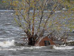 The Poets' Pathway rock overwhelmed by the flooded, raging Ottawa River at the most western end of Britannia Park in Nepean (Ottawa), Ontario (Ullysses) Tags: poetspathway britanniabaypark britanniabaybeach ottawariverfloodof2019 spring printemps ottawariver rivièredesoutaouais flooding flood inondation springthaw nepean ottawa ontario canada poets poetry