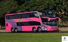 2000 (RV Photos) Tags: viaçãominadovale marcopolo marcopolog7 paradiso1800dd scania bus onibus doubledecker br116 rodoviapresidentedutra turismo