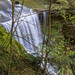 Cedar Falls_DSC1543