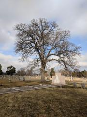 Elektra Waggoner, West Hill Cemetery, Sherman, TX (spadiva101) Tags: focalpoint