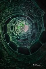 Torre invertida, Palacio La Regaleira (T. Dosuna) Tags: 20180814 palacioderegaleira portugal sintra fotografíadepaisaje landscape pozoiniciatico tdosuna nikon d7100
