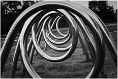 More Artistic Bike Stands (cjhall.nz) Tags: chrome creative newzealand monocrome abstract bw blackandwhite aucklanddomain bikestands