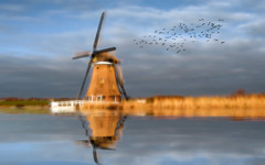 Solitude 666 (Wim Koopman) Tags: windmill dutch water ditch reflection watercourse effect glowing flowing sky birds flight flock flying clouds cloudage mood atmosphere