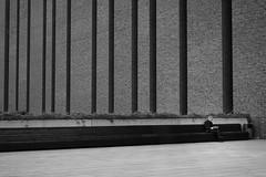 Street life - Katowice 2019 (Tu i tam fotografia) Tags: blackandwhite noiretblanc enblancoynegro inbiancoenero bw monochrome czerń biel czerńibiel noir czarnobiałe blancoynegro biancoenero linie lines outdoor człowiek man people ludzie książka book polska poland street ulica miasto city town urban streetphoto streetphotography fotografiauliczna czytanie reading ławka bench minimal minimalism minimalizm cegły bricks mur ściana wall streetlife