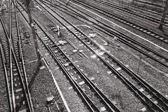 Railway (Architecamera) Tags: blackwhite blackandwhite railway train snap film monochrome architecture