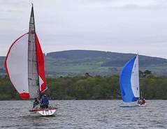 pole on mast (antrimboatclub) Tags: antrimboatclub boat sail sailing ireland sixmilewater loughneagh antrimbay antrim