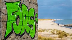 Grenen northern Tip of Denmark (fotobutze) Tags: aprilmai2019 dänemark2019 klegod meer northsea grafitti bunker skagen