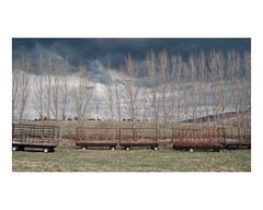 hébertville (Mériol Lehmann) Tags: trees storm clouds cloudy trailers fields rural landscape topographies lacstjean quebec canada hébertville