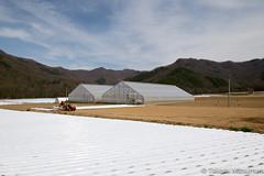 Greenhouse (takashi_matsumura) Tags: greenhouse kawakami saku nagano ngc nikon d5300 川上村 佐久郡 長野県 afp dx nikkor 1020mm f4556g vr