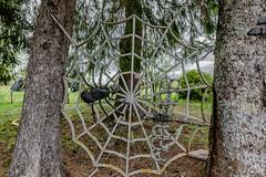 07-La libellule prise dans la toile d'araignée (Alain COSTE) Tags: 2019 hautevienne lavarache limousin nikon ocb printemps sigma20mmf14 eymoutiers france musée de la récup muséedelarécup