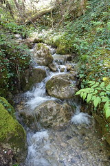 Le Var @ Hike to Vallée du Laudon (*_*) Tags: 2019 printemps spring afternoon may hiking mountain montagne nature randonnee walk marche europe france hautesavoie 74 annecy saintjorioz laudon bauges river circuitdulaudon loop valléedulaudon savoie