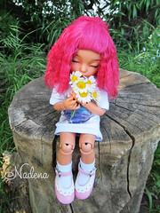 IMG_2766 (nadena14) Tags: wig bjdwig bjd handmadedoll bjddoll dollphoto fairyland bjdphotographycoloringh littlefee