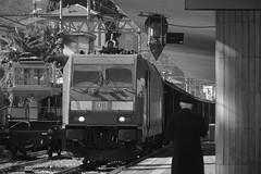 stresa #8 (train_spotting) Tags: stresa lineadelsempione dbcargoitaliasrl lenord ferrovienordmilano nordcargo traxxf140dc e4831075nc bombardier nikond7100