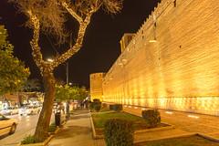 Forteresse (hubertguyon) Tags: iran perse persia asie asia moyen proche orient middle east chiraz shiraz ville city citadelle fortress argekarim khan