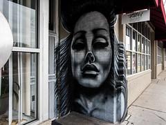 Albuquerque-2616 (David Leyse) Tags: streetart albuquerque