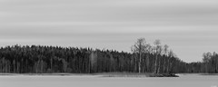 Calm woods (Rico the noob) Tags: dof 300mm d850 landscape nature water outdoor panorama clouds longexposure lake published trees monochrome travel forest 300mmf4pf finland bw 2018 tree blackandwhite sky
