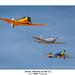 Texan, Mentor & Yak-52