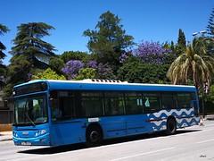 Castrosua Cs40 Iveco 106 COMUJESA (Bus Box) Tags: autobus bus urbano comujesa jerezdelafrontera movilidad emt madrid iveco castrosua