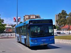 Castrosua Cs40 Iveco 84 COMUJESA (Bus Box) Tags: autobus bus urbano comujesa jerezdelafrontera movilidad emt madrid iveco castrosua