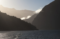 The Fiord (Joost10000) Tags: new zealand newzealand milford sound milfordsound tasman sea tasmansea ocean pacific water waves mountains mountain morning fiord fjord southland canon canon5d eos landscape landschaft outdoors natur nature wild wilderness travel adventure fiordland national park backlight