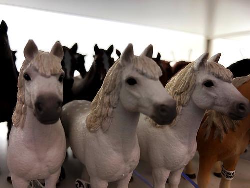 All the Wild Plastic Horses (Hobby Zone)