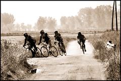 BECCATI IN CURVA (claudiobertolesi) Tags: claudiobertolesi europa europe ciclisti biciclette cicli italy italia lombardia landscape orizzonte orizzonti paesaggio strada strade velocipide gara garaciclistica sport ciclismo sony sonynex6 2014 campagna incurva curva bycicle