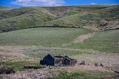 Old house (Richard McGuire) Tags: palouse steptoebutte washington landscape