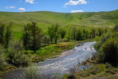 Tucannon River (Richard McGuire) Tags: palouse steptoebutte washington landscape