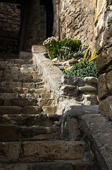 small garden (beeldmark) Tags: trap dorp catalonië zonnig spanje detail catalonia catalunya cataluña españa spain sunny gehucht smalltown stadje staircase stairs village besalú gerona hdpentaxda1685mmf3556eddcwr beeldmark pentax k5