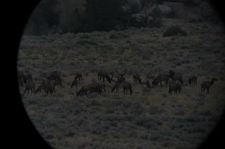 Wyoming Elk Hunt and Mule Deer Hunt 27
