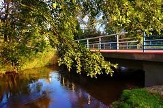 2012-10-02 Loryniec (140) (aknad0) Tags: polska loryniec wda krajobraz rzeki drzewa most