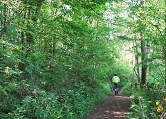 Balcombe-Ardingly Commute (brightondj) Tags: commute balcombeardingly cycle cycleride bikeride bike ardinglyreservoir 2010s 2019 2019may