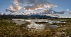 washoe wetlands