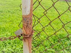 Óxido (inma F) Tags: valla fence hierba rural campo green wabisabi candado verde reja óxido