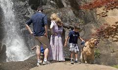 Maymont Park  Richmond Virginia (watts photos1) Tags: maymont park richmond virginia waterfall water falls people rocks garden rva dog va parks tree japanese maple