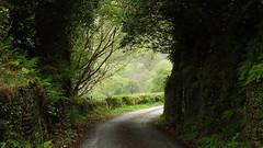 Snowdonia Way May 2019 (kukkudrill) Tags: snowdonia way wales uk united kingdom walking hiking trekking long distance path route expedition