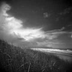 Clatsop Spit #7 (LowerDarnley) Tags: holga clatsopspit hammond oregon oregoncoast pacificocean dunegrass clouds sky northwest storm