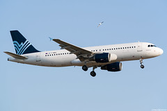 F-HBIS (Andras Regos) Tags: aviation aircraft plane fly airport lhr egll heathrow approach landing aigleazur tap airbus a320 bird