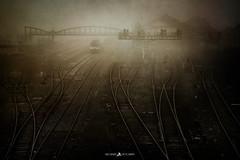 Misty Trainstation (Brice L) Tags: brouillard mist fog brume train station gare rail railway