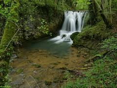Cascade du Moulin sur la Furieuse - Jura (francky25) Tags: cascade du moulin sur la furieuse jura franchecomté printemps rivière