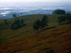 Maruka highland (threepinner) Tags: takikawa marukahighland hokkaidou hokkaido northernjapan spring mamiya m645 sekor 110mm f28 positive selfdeveloped reversal 丸加高原 滝川 北海道 北日本