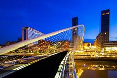 Zubizuri bridge / Calatrava 2019 / Bilbao (zilverbat.) Tags: calatrava zilverbat bridge bilbao spanje spain bask biskay bluehour nightlights nightphotography brug brucke longexposurebynight longexposure europe travel timelife tripadvisor town night canon centrum ngc heritage citytrip basque