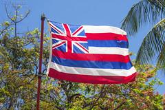 State Flag of Hawaii - Flying Over Oahu (J.L. Ramsaur Photography) Tags: jlrphotography nikond7200 nikon d7200 photography photo oahuhi 25thanniversary honolulucounty hawaii 2019 engineerswithcameras islandsofhawaii photographyforgod hawaiianislands islandphotography screamofthephotographer ibeauty jlramsaurphotography photograph pic oahu tennesseephotographer oahuhawaii 25years anniversarytrip bucketlisttrip thegatheringplace 3rdlargesthawaiianisland 20thlargestislandintheunitedstates therainbowstate hawaiianflag redwhiteblue flagofthestateofhawaii hawaiistateflag unionjack unionflag unionflagoftheunitedkingdom kingkamehamehai 1845 flag stateflag hiflag histateflag history historyisallaroundus bluesky deepbluesky beautifulsky palmtree