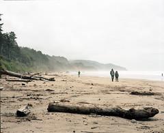Arcadia walkers (Kent C.) Tags: mamiyarb67pros film filmphotography kodakportra160 mediumformat 6x7 120film