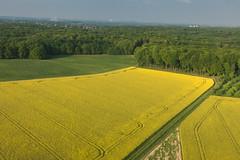 Dortmund Rhapsody