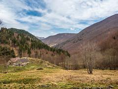 FR004_OLYEM1MKII_20190421_134148_-Edit (Federico Bonfanti) Tags: bielmonte pasqua oasi zegna 2019 montagna mountain piemonte piedmont visitpiedmont
