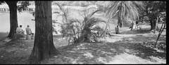 000072580019 (stonkolegg) Tags: xp2 ilford 400 iso minolta panorama riva 24mm 45 taiwan tainan