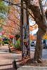 Mosaic Art on Power Pole (Serendigity) Tags: adelaidehills australia sa southaustralia stirling artwork autumn cars colours leaves mosaic stobiepole street trees bridgewater