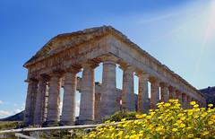 Der dorische Tempel von Segesta / Sizilien (Mariandl48) Tags: dorischetempel segesta sizilien blumen ringhalle tempel ruine