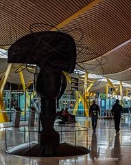 Madrid airport 3 (eskstreetph) Tags: canon kseniaeskstreet madrid spain europe statue people architecture travelphotography traveler travelphoto travelpic travel travels
